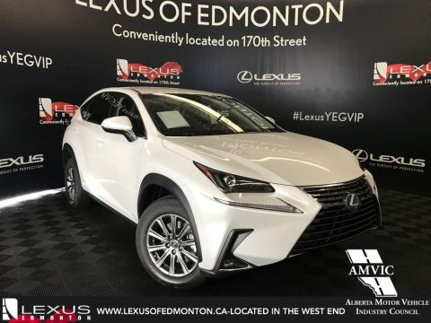 New Lexus NX 300 Standard Package