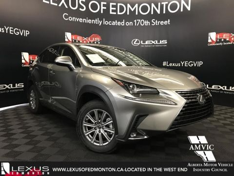 New 2018 Lexus NX 300 Standard Package