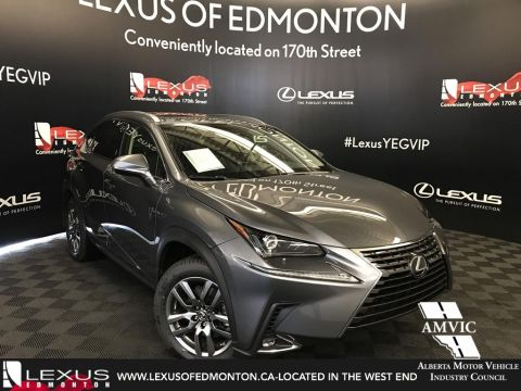 New 2019 Lexus NX 300 Premium Package
