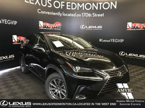 New 2019 Lexus NX 300 Standard Package